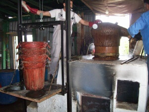 Raki Herstellung Kreta